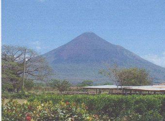 モモトンボ山